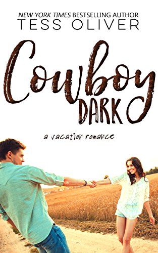 Cowboy Dark (Vacation Romance Collection Book 1)