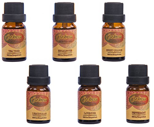 Top 6 Essential oils Therapeutic Grade Gift Set 10ml