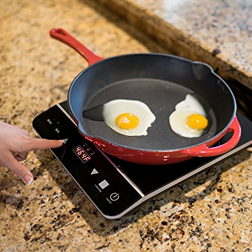 INDUXPERT Portable Induction Cooktop 1800W with Power, Temperature and