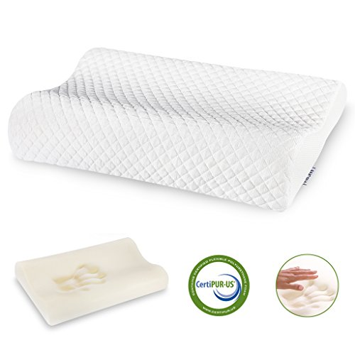 LANGRIA Contoured Icy Cooling Fabric Memory Foam Support Pillow