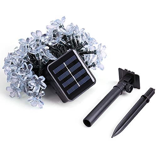 Qedertek Flower Solar String Lights, 21ft 50 LED Fairy