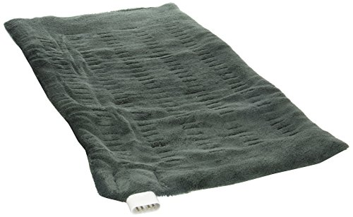 Sunbeam 002013-912-000 King Size XpressHeat Heating Pad, Green
