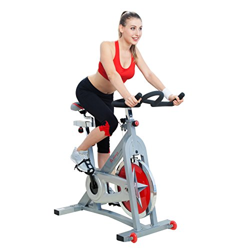 Pro Indoor Cycling Bike by Sunny Health  Fitness