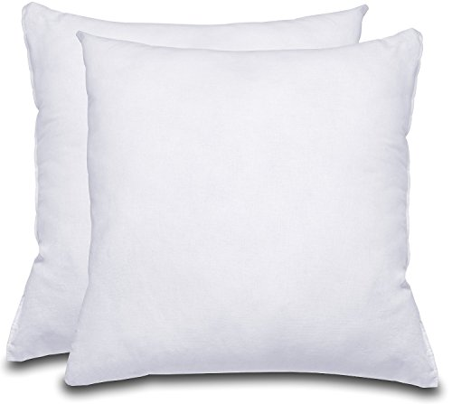 Decorative Pillow Insert (2 Pack) – Square 18×18 Sofa