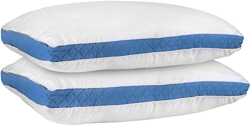 Gusseted Quilted Pillow (Queen, 2 Pack) – Hypo Allergenic