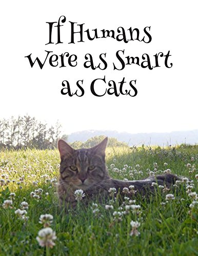 If Humans Were as Smart as Cats