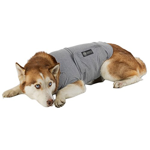 $23.84 American Kennel Club Calm Anti-Anxiety and Stress Relief Coat