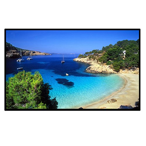 Excelvan Outdoor Portable Movie Screen 120 Inch 16:9 Home