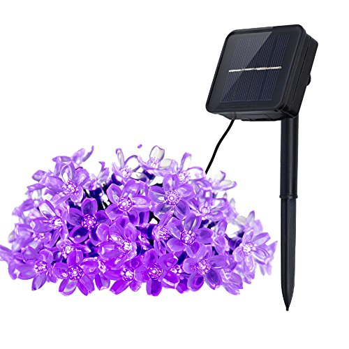 Innoo Tech Solar Outdoor String Lights 21ft 50 LED