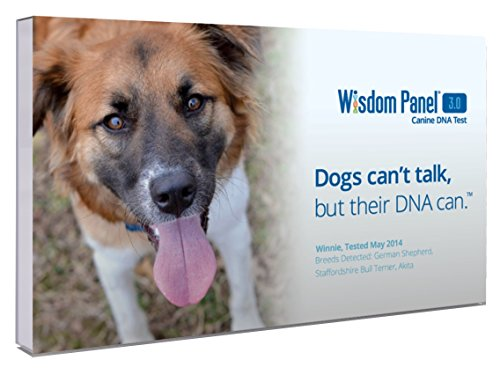 Mars Veterinary Wisdom Panel 3.0 Breed Identification DNA Test