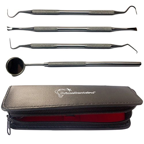 PrimeDentalPro Dentists Tools Kit Bundle with Dental Mirror, Tartar
