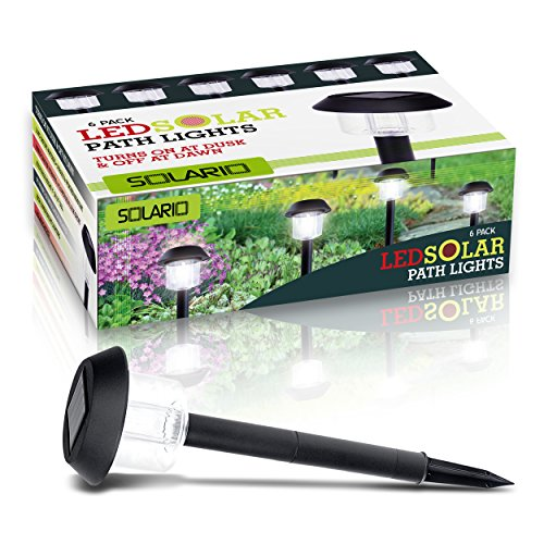 Solario Garden Decor Solar Powered Stake Lights- Pack of