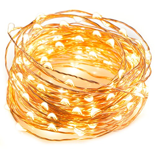 LED String Lights 33 ft with 100 LEDs, TaoTronics