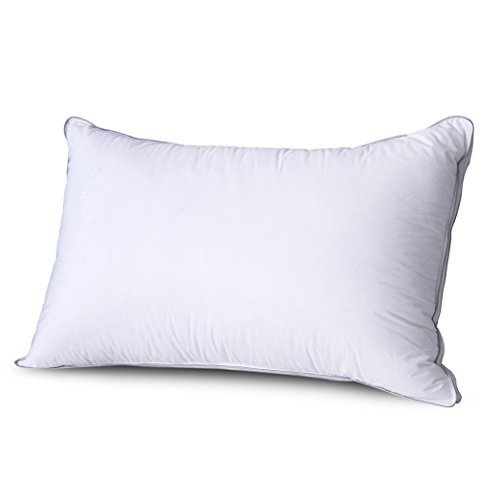 Get A Free Cr Sleep Memory Foam Pillow with Soft White Duck Down Cover, Height Adjustable, Queen, 1-Pack