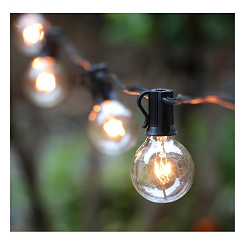 25Ft G40 Globe String Lights with Clear Bulbs, UL