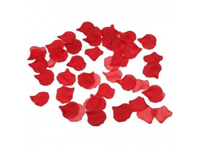 Get Free Silk Rose Petals!
