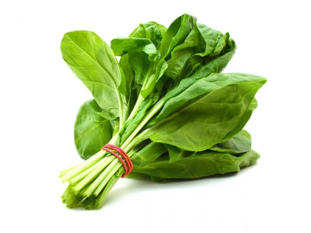 Get Free Organic Spinach Seeds!