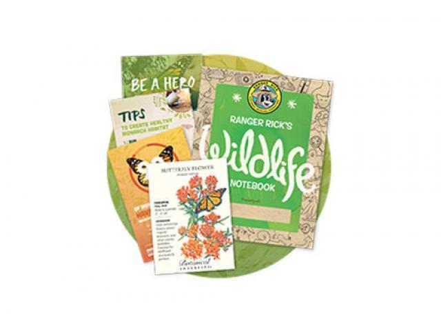 Get A Free Butterfly Garden Starter Kit!